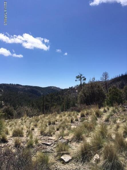 11179 E. Upper Goat Hill, Mount Lemmon, AZ 85619 Photo 10