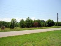 Home for sale: Bear Ln., Tellico Plains, TN 37385