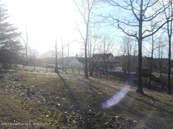 978 Tucker Cemetery Rd., Eldridge, AL 35554 Photo 91