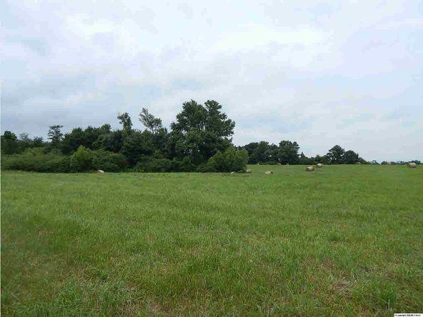 County Rd. 400, Grove Oak, AL 35975 Photo 2