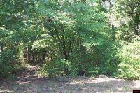 Home for sale: Lot N. Cr 37, Clarkridge, AR 72623