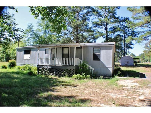 908 Mullins Rd., Eclectic, AL 36024 Photo 4