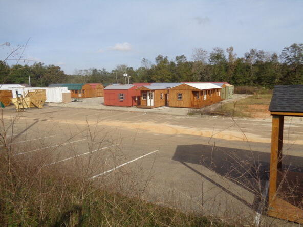 390 Glen Lawrence/ Hwy. 84, Cowarts, AL 36321 Photo 8