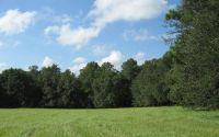 Home for sale: N.W. Charter Oak Glen, Lake City, FL 32055