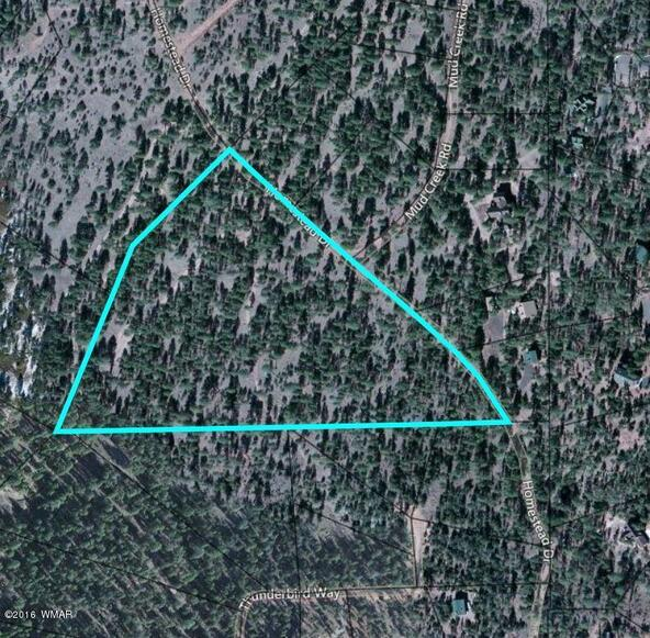 15.64 Ac Near Airport, Overgaard, AZ 85933 Photo 2