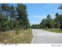 Home for sale: 11 W. Crossandra Ct., Homosassa, FL 34446