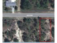 Home for sale: 0 N.W. Marine Blvd., Dunnellon, FL 34431