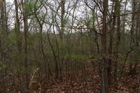 Home for sale: 21 Meadowlands Dr., Talking Rock, GA 30175