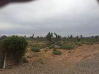 Home for sale: N. Alamo, Littlefield, AZ 86432