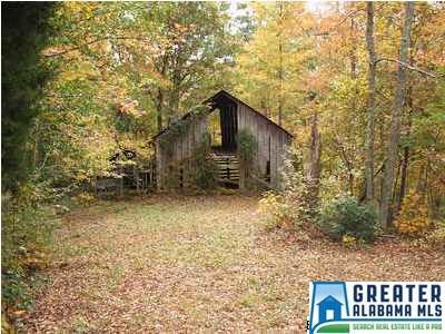 2481 Guntertown Rd., Talladega, AL 35160 Photo 3