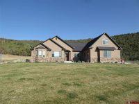 Home for sale: 17834 Hanson Rd., Cedaredge, CO 81413