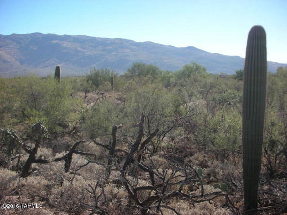 11435 E. Calle Javelina, Tucson, AZ 85748 Photo 3