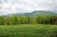 Home for sale: High Mountain E. 9 Meadows Rd., Harman, WV 26270
