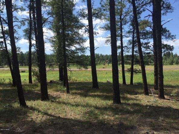 9584 Sierra Springs Way, Pinetop, AZ 85935 Photo 15