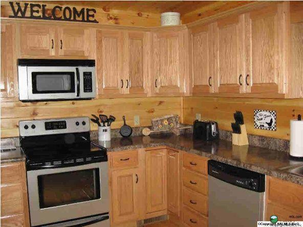1226 County Rd. 106, Mentone, AL 35984 Photo 17