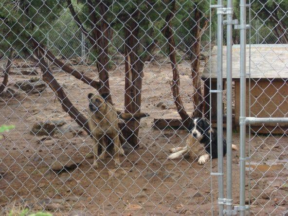 7944 Marken Ranch Rd., Show Low, AZ 85901 Photo 58