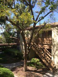 Home for sale: 22812 Hilton Head Dr., Diamond Bar, CA 91765