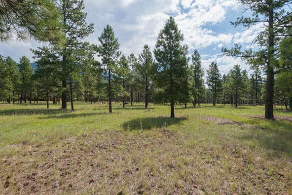 8r Lockett Ranches, Flagstaff, AZ 86001 Photo 1