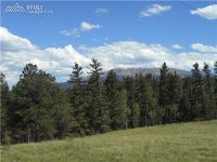 Home for sale: 00 County 25 Rd., Divide, CO 80814
