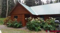 Home for sale: 81 Forest Ln., Placerville, CO 81430