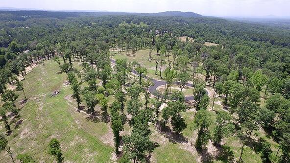 165 Ridgehaven, Hot Springs, AR 71913 Photo 19