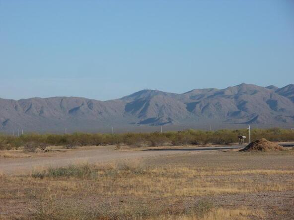 28012 N. 254th Avenue, Wittmann, AZ 85361 Photo 8