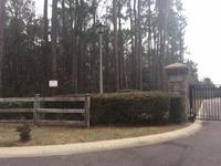 Home for sale: 7 Ryefield Ln., Ridgeville, SC 29472