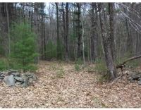 Home for sale: Parcel 6 Doane Rd., Ware, MA 01082