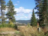Home for sale: 244 Bald Eagle Ln., Donnelly, ID 83615