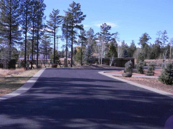 5428 E. S. Elk Springs, Lakeside, AZ 85929 Photo 5