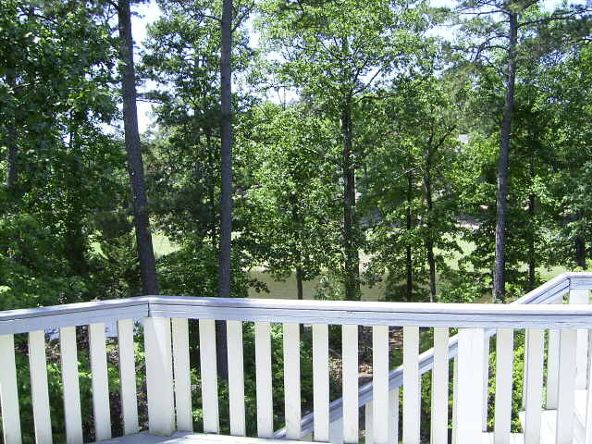 3 Rodriguez Trace, Hot Springs Village, AR 71909 Photo 38
