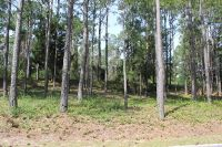 Home for sale: 4038 Barnes Bluff Dr., Southport, NC 28461