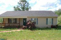 Home for sale: 8752 Howardsville Tpke, Schuyler, VA 22969