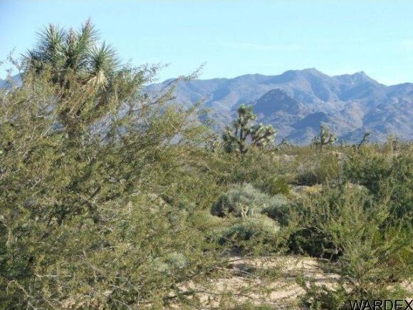 3529-C Arroyo Rd., Yucca, AZ 86438 Photo 1
