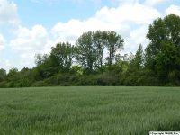 Home for sale: 1213 Williams Rd., Guntersville, AL 35976