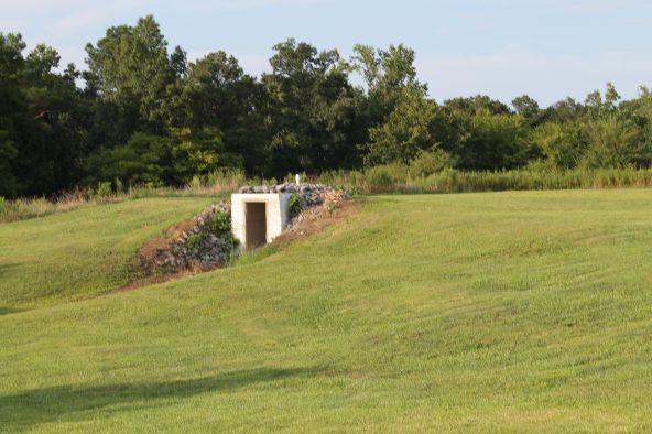 696 County Rd. 46, Addison, AL 35540 Photo 15
