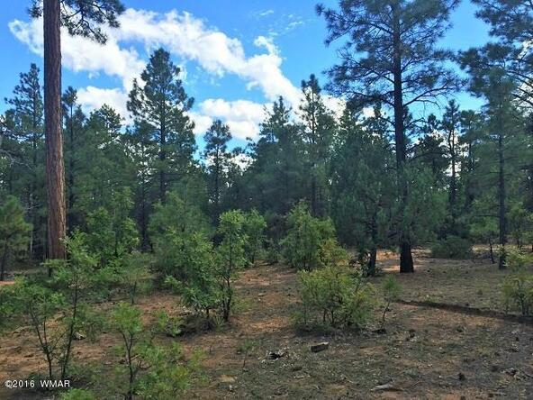 4281 W. Falling Leaf Rd., Show Low, AZ 85901 Photo 4
