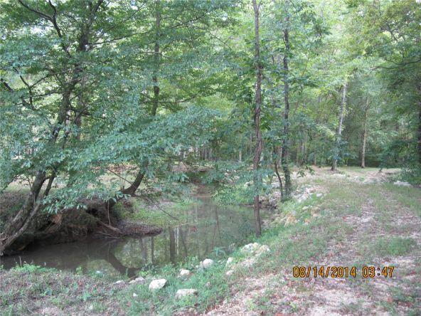 1865 County Rd. 99, Gaylesville, AL 35973 Photo 28