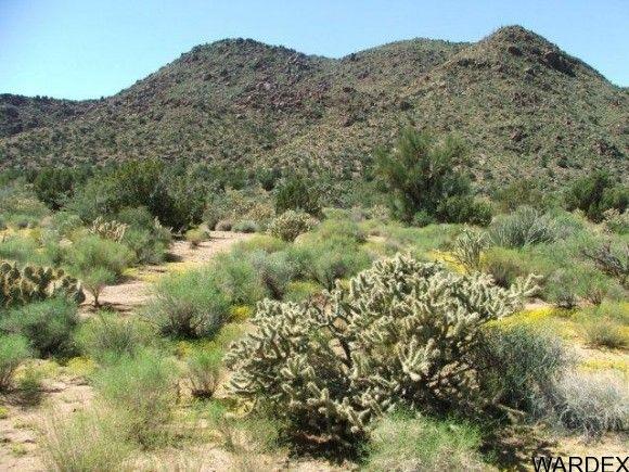 3578-A E. Desert Willow Dr., Yucca, AZ 86438 Photo 9