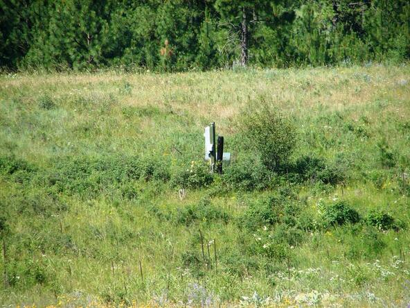 740 C Arden Butte Rd., Colville, WA 99114 Photo 13