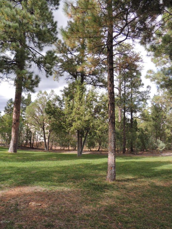 1911 S. Sierra Park Trail, Show Low, AZ 85901 Photo 18