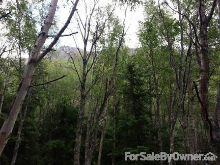 24343 Seward Hwy., Indian, AK 99540 Photo 40