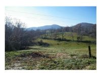 Home for sale: 95 W. Oakview Rd., Asheville, NC 28806