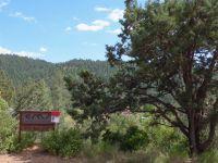 Home for sale: Lot 7 Wild Turkey Ln., Strawberry, AZ 85544
