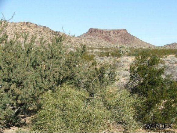 3529-D Arroyo Rd., Yucca, AZ 86438 Photo 1