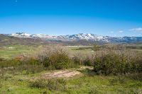 Home for sale: 42101 Deer Rd., Steamboat Springs, CO 80487