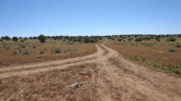 645 Westwood Ranch Lot 645, Seligman, AZ 86337 Photo 7