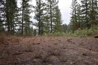 Home for sale: Tbd Blk 3 Lot 6 Meadow Dr., Idaho City, ID 83631