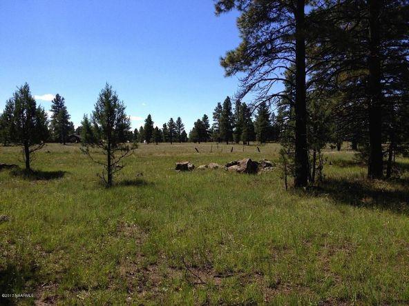 125 E. Mount Elden Lookout Rd., Flagstaff, AZ 86001 Photo 4