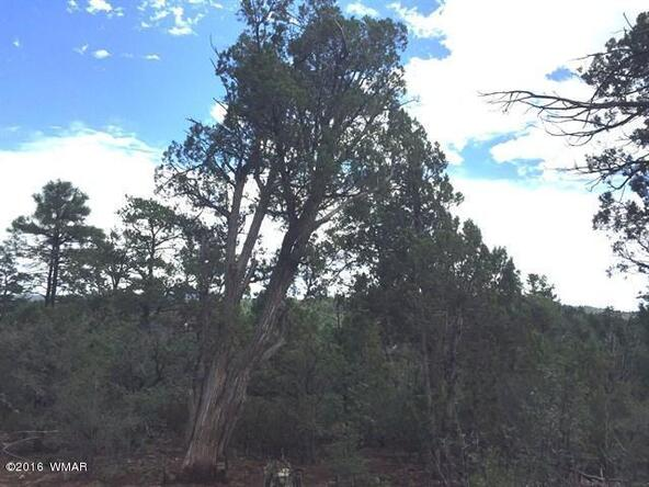 800 E. Pine Oaks Dr., Show Low, AZ 85901 Photo 9